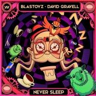 Blastoyz & David Gravell - Never Sleep (Original Mix)