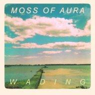 Moss of Aura - Chase (Original Mix)