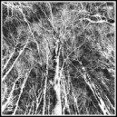 Kyam - Thought Loop (Original Mix)