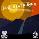Soul Beat Runna - Fly By Wire (David Louis Remix)