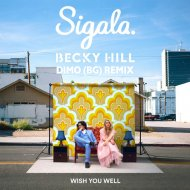 Sigala & Becky Hill - Wish You Well  (DiMO (BG) Remix)