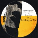 Alexander Koning, Dave Leatherman, Bruce Nolan - R U Looking At Me  (Original Mix)