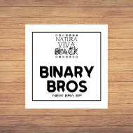 Binary Bros - Solar (Original Mix)