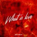 Haddaway - What Is Love  (Jake Waltz 2K19)