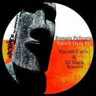 Romain Pellegrin - Take It Over Me  (DJ Statik Remix)