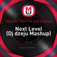 Galoski, RA5TIK and Avadox - Next Level (Dj dzeju Mashup)