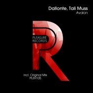 Dallonte & Tali Muss - Avalon (Original Mix)