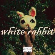 PJ Lucid - White Rabbit (Original Mix)