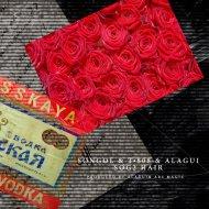 Songol & T808 & Alagui - Sog2 Hair (Original Mix)