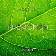 Moog Boy - Phenomen (Original Mix)