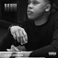 Lil Jay El Especialista - Blue Notes (Original Mix)