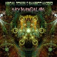Abigail Noises & Shabboo Harper - Sky Mangalam (original mix)