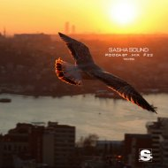 Sasha Sound - PODCAST MIX 22 ()
