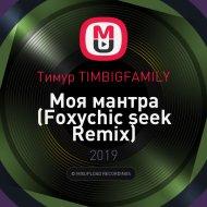 Тимур TIMBIGFAMILY - Моя мантра (Foxychic seek Remix)