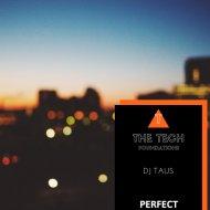 DJ Taus - Perfect (Original Mix)