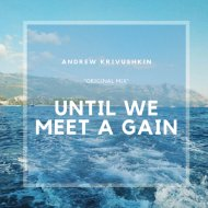 Andrew Krivushkin - Until We Meet Again (Original Mix)