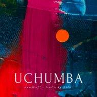 AAMBeatz - Uchumba (Original Mix)