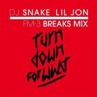 DJ Snake x Lil Jon - Turn Down For What (FM-3 Breaks Mix)