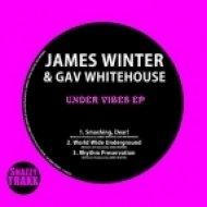 James Winter - World Wide Underground (Original Mix)
