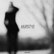 Aminuts?  - Embrace (Original mix)