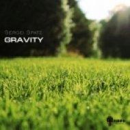 Sergei Spatz - Gravity (Fitomars Remix)