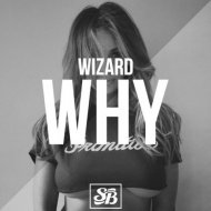 Wizard  - Why (Original mix)