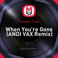 Simple Flow - When You\'re Gone (ANDI VAX Remix)