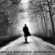 AnimoEx & AngelaSheik - Home Before Dark (Original mix)