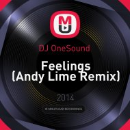 DJ OneSound  - Feelings  (Andy Lime Remix)