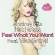 Andrey Exx, Hot Hotels, Vika Grand - Feel What You Want (Mister Salo remix)