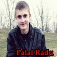 Palai Radu - DanceMania (Promotional Mix October 2014)