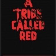 Angel Haze - A Tribe Called Red (Original mix)