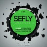 Sefly - Strange Life (Danny Lo Scippo Remix)