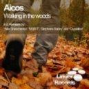 Aicos - Walking in the Woods (Radio Edit)