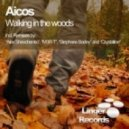 Aicos - Walking in the Woods (Crystalline Remix)