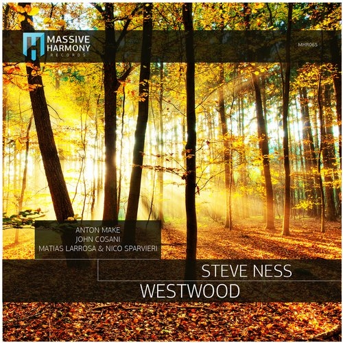Steve Ness - Westwood (Original Mix)