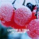 Earstrip & Torha - Like a Circle (Platinum Doug Remix)