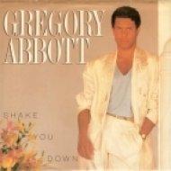 Gregory Abbott - Shake You Down (Discofire Mix)