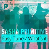 Sasha Primitive - What\'s It (Original Mix)