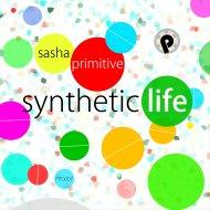 Sasha Primitive - Plays The Distance (Original Mix)