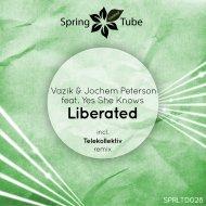 Vazik - Liberated (Original Mix)