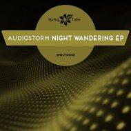 AudioStorm - Feel Me (Original Mix)