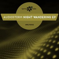 AudioStorm - Night Wandering (Original Mix)
