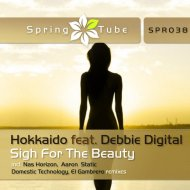 Hokkaido - Sigh For The Beauty (Domestic Technology Remix)