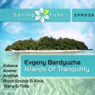 Evgeny Bardyuzha - Islands Of Tranquility (Andrez Remix)