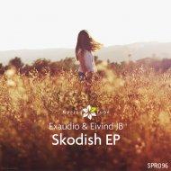 Exaudio - Skodish (Original Mix)