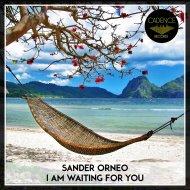 Sander Orneo - Confession (Original Mix)