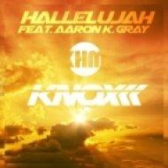 Knox ft Aaron K. Gray - Hallelujah (instrumental Mix)