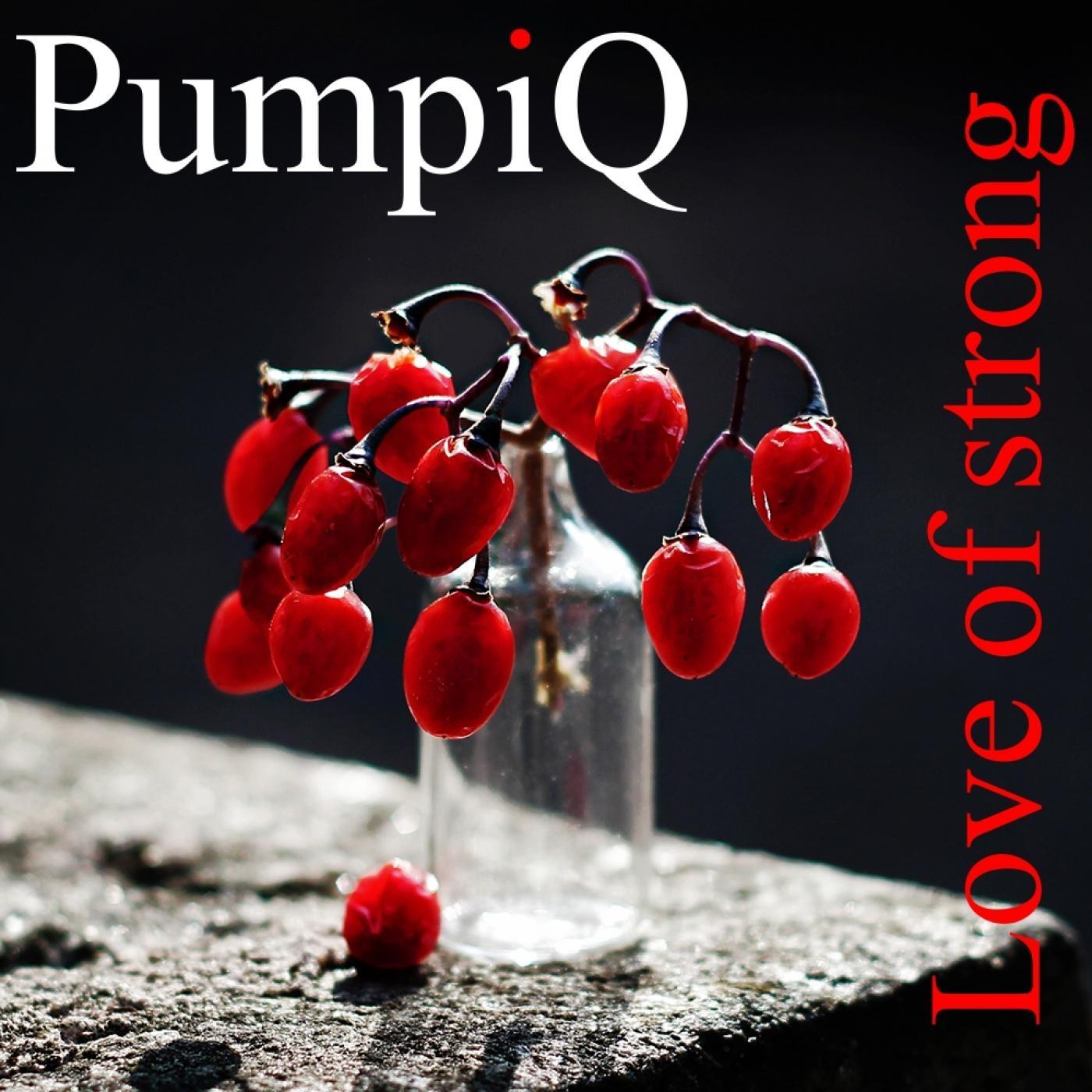 PumpiQ - Love Of Strong (Vocal Mix)