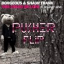 Borgeous & Shaun Frank - This Could Be Love (Pusher Flip)